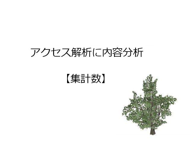アクセス解析【集計数】