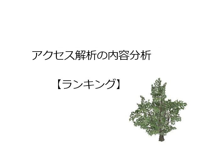 アクセス解析【ランキング】